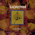 """Debris - 12"""" - front"""